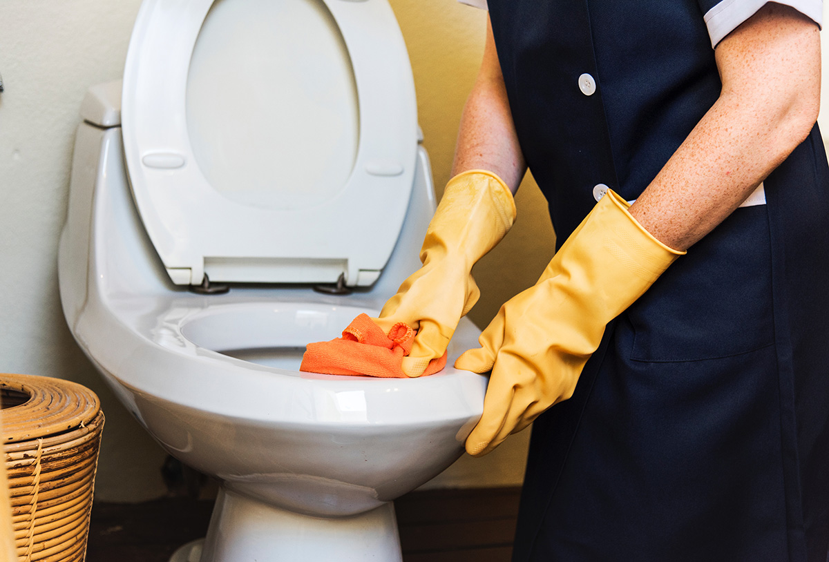 Professional Cleaning a Toilet